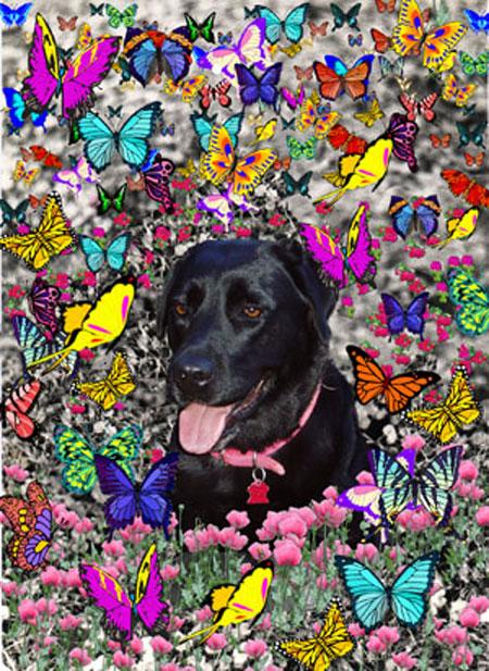 Abby in Butterflies