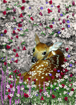 Bambi in Flowers I