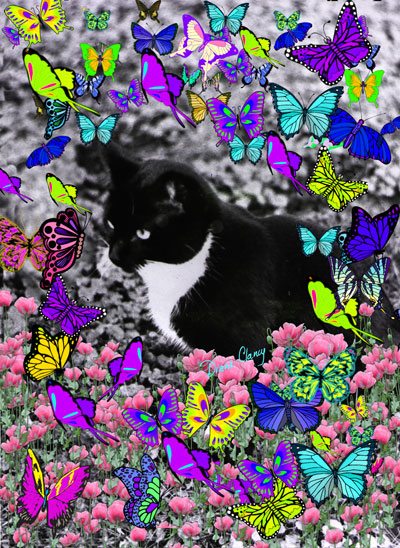 Illustration Friday - Whiskers - Freckles in Butterflies II