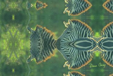 Zebras Within
