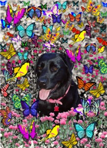 Abby-in-Butterflies-mid